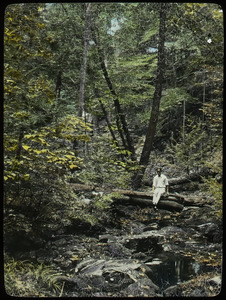 Holland Glen (young man sitting on log over woodland stream)
