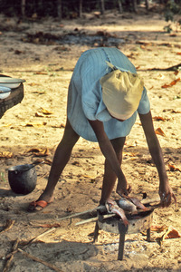 Haitian woman cooking fish