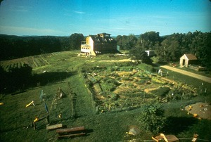 View of Community garden from tower of Michael's house