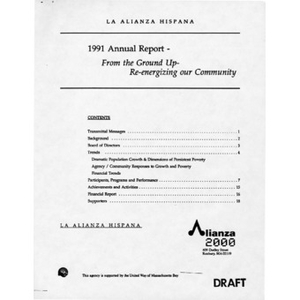 1991 annual report draft.