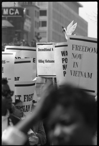 Antiwar protesters during the March on Washington carrying signs 'Freedom now in Vietnam'