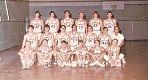1971 Springfield College Men's Volleyball Team