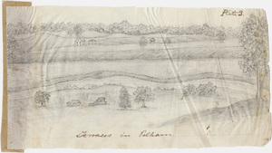 "Pencil drawing, ""Terraces in the Pelham"""