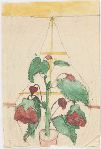 Drawing of red flowers in yellow window