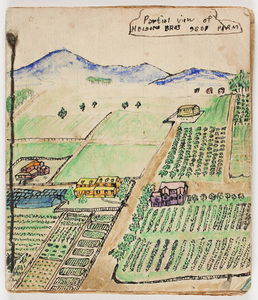 Nelson Family Juvenilia Collection of Pamela Russell and Murray McClellan