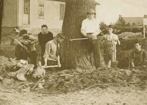 Student workers digging the ground around a tree