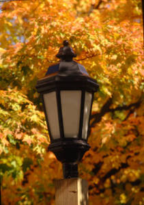 A Lamp Post on Campus at Springfield College