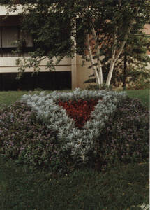 Arrangement of Flowers in front of Babson Library in Springfield College, ca. 1990