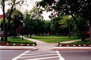A summer photo of Springfield College, 2000