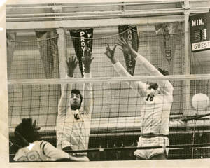 Blocking the volleyball