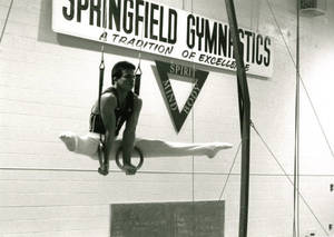 Ricardo Portalatin on the rings