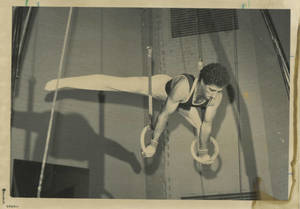 Mike Viola performing on the Rings