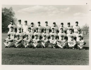 The 1989 Springfield College baseball team