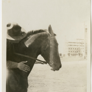 Camp MacArthur - Waco, Texas - World War I - A Lieutenant on a horse