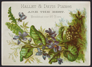 Trade card for Hallet & Davis Pianos, Washington Street, Boston, Mass., undated