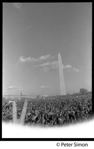 Flashing a peace sign above the crowd, with Washington Monument in the background: Vietnam Moratorium march on Washington