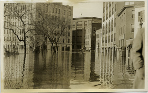 Aftermath of the great Hartford Flood