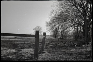 View of fence and fields