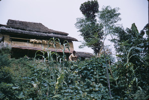 House and garden in rural Nepal