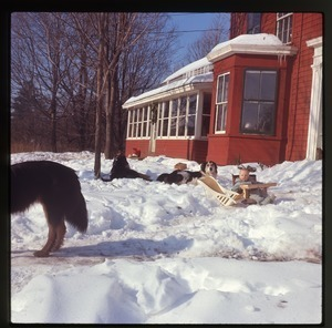 Dogs and baby (Eben) in snow in front of house, Montague Farm Commune