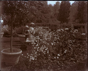 Children playing in the garden of the Saltonstall House, Milton, Mass.