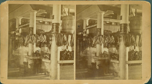 Stereograph of a stall in Quincy Market, Boston, Mass., undated