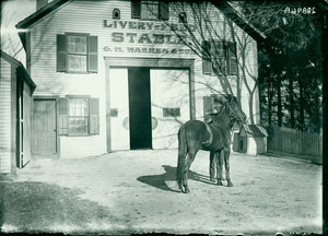 Exterior view of the G.H. Warren and Sons Stables, Shrewsbury, Mass., undated