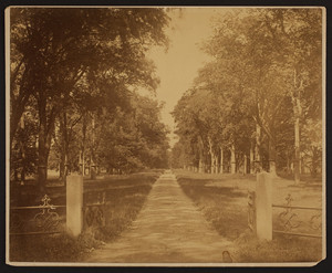 Driveway of the Josiah Quincy House, Quincy, Mass., undated