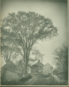 Country road with horse, carriage, and farm house, Peterboro, N. H., undated