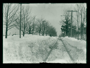 """""""Long Hill"""" covered in snow, Maple Ave., Shrewsbury, Mass., 28 December 1909"""