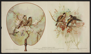 Decorative studies of birds, The Art Interchange Co., location unknown, 1886