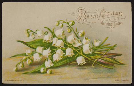 Trade card for Currier & Kendall, clothiers, Milford, Mass., undated