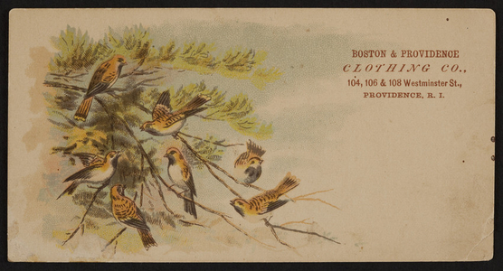 Trade card for Boston & Providence Clothing Co., 104, 106 & 108 Westminster St., Providence, Rhode Island, ca. 1877