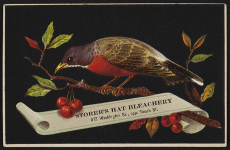 Trade card for Storer's Hat Bleachery, 673 Washington Street opposite Beach Street, Boston, Mass., undated