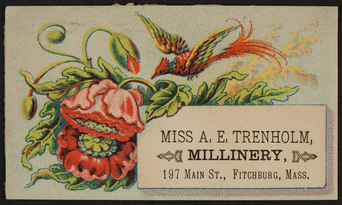 Trade card for Miss A.E.Trenholm, millinery, 197 Main Street, Fitchburg, Mass., undated
