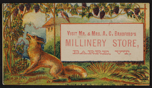 Trade card for Mr. and Mrs. A.C. Bradford's Millinery Store, Barre, Vermont, undated