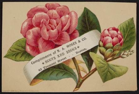 Trade card for N.A. Moses & Co., boots and shoes, 43 Tremont Street, Boston, Mass., 1878