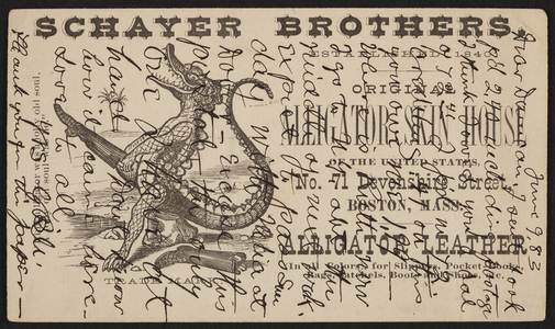 Trade card for Schayer Brothers, Alligator Skin House, No. 71 Devonshire Street, Boston, Mass., dated June 9, 1883