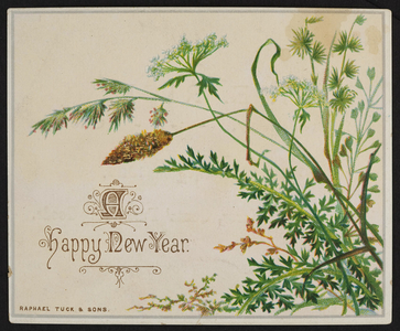 Trade card for M.E. Rice, dry and fancy goods, 222 Broadway Street, Chelsea, Mass., undated