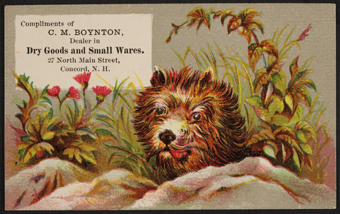 Trade card for C.M. Boynton, dealer in dry goods and small wares, 27 North Main Street, Concord, New Hampshire, undated