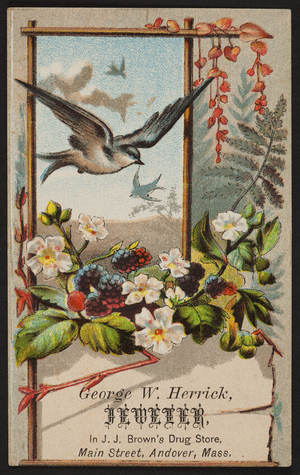 Trade card for George W. Herrick, jeweler, Main Street, Andover, Mass., undated