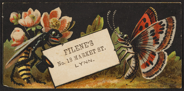 Trade card for Filene's, department store, No. 18 Market Street, Lynn, Mass., undated