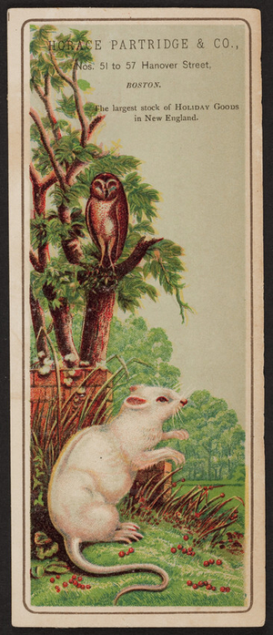 Trade card for Horace Patridge & Co., fancy goods and toys, 51, 53, 55 & 57 Hanover Street, opposite American House, Boston, Mass., undated