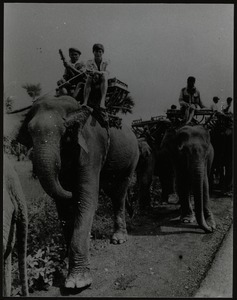 Cambodian army of rebels riding elephants
