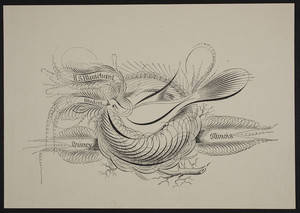 Sample sheet, bird on a branch, H.S. Blanchard, Quincy, Illinois, undated