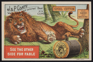 Trade card for J. & P. Coats' Best Six Cord Thread 50, location unknown, undated