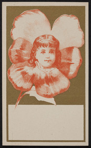 Trade card for Trifet's, stationery, 19 Franklin Street, Boston, Mass., undated