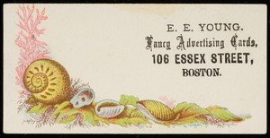 Trade card for E.E. Young, fancy advertising cards, 106 Essex Street, Boston, Mass., undated