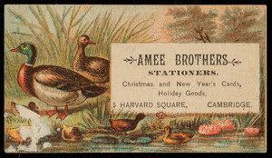 Trade card for Amee Brothers, stationers, 5 Harvard Square, Cambridge, Mass., undated