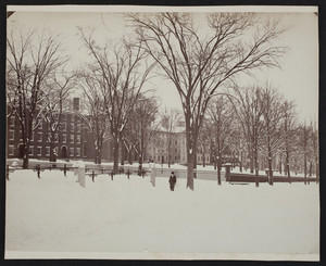 Brown University Campus Front Green in the Winter, Providence, R.I., 1881